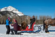 A private sleigh ride is the perfect way to propose in Banff