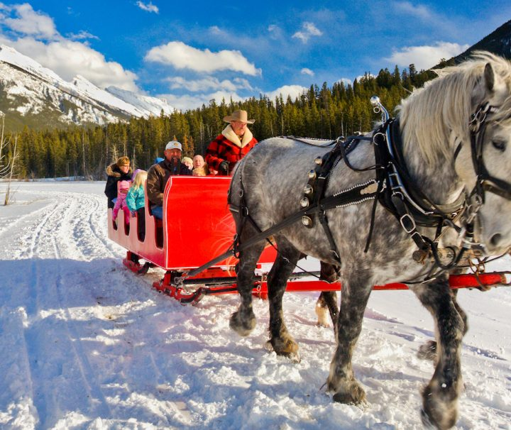 Banff Sleigh Ride