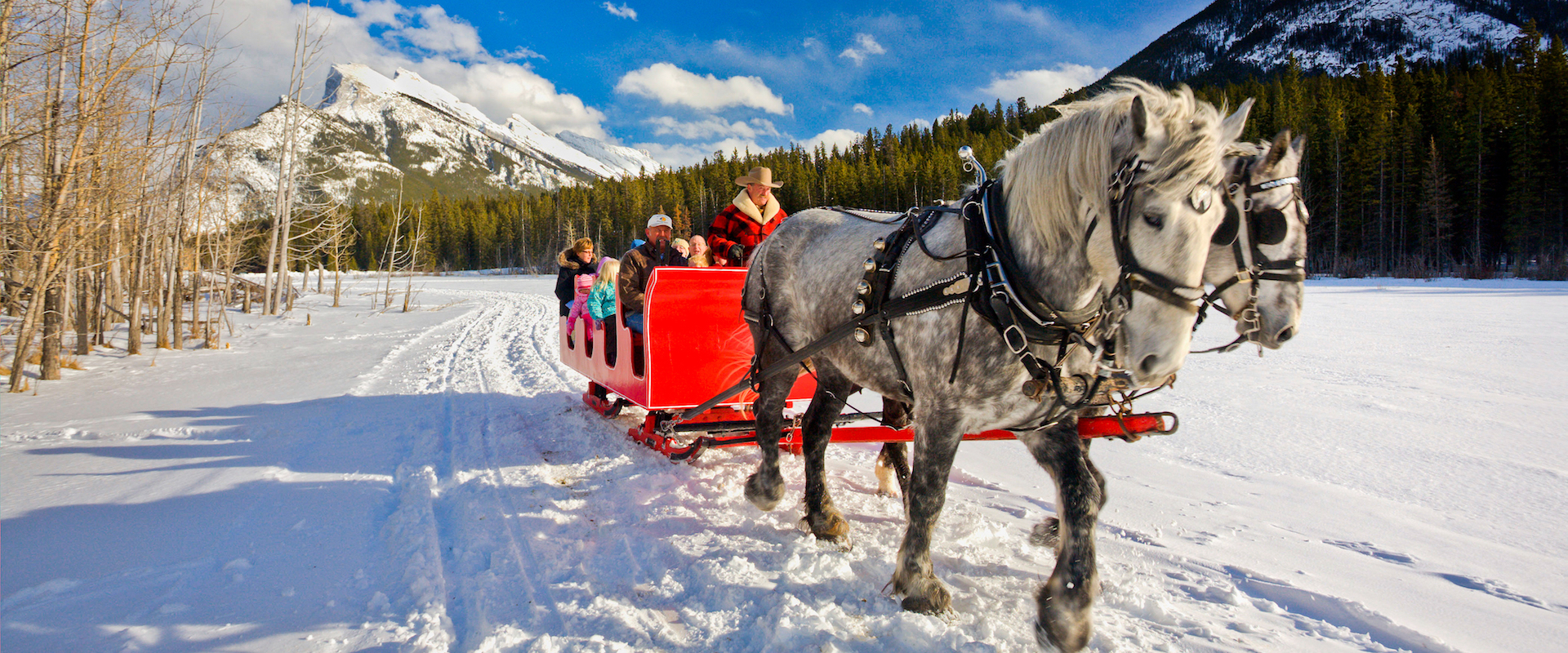 Banff Trail Riders Public Sleigh Ride