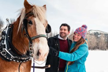 Banff private sleigh ride with Banff Trail Riders