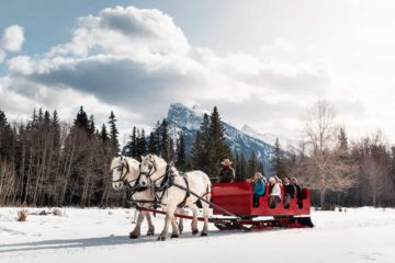 Banff snowy sleigh ride in the Canadian Rockies with Banff Trail Riders