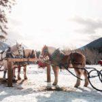 Banff winter sleigh rides with Banff Trail Riders