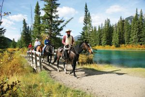 Bow River Ride Horseback with Banff Trail Riders