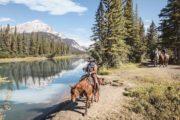 Banff Horseback Ride with BBQ