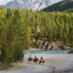 Cross the Spray River on a horseback ride