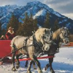 Enjoy a winter sleigh ride for the whole family in Banff