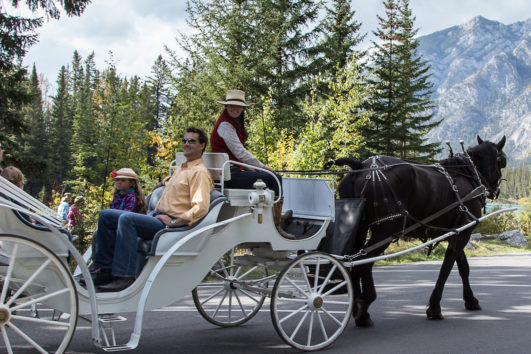 Banff Family Carriage Ride with Banff Trail Riders