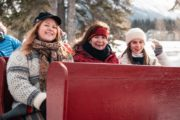 Family sleigh ride in Banff with Banff Trail Riders