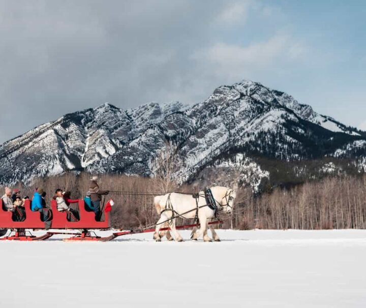 Group sleigh ride in Banff with Banff Trail Riders
