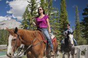 Hourly rides and backcountry horseback vacations