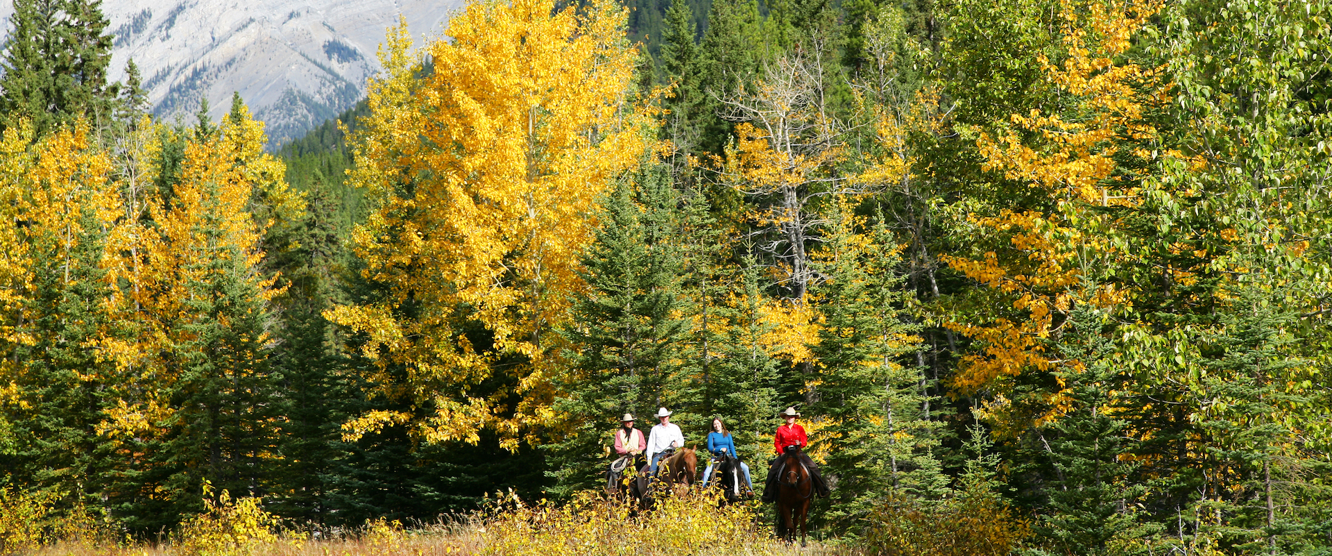 Horseback Ride Fall Banff Trail Riders