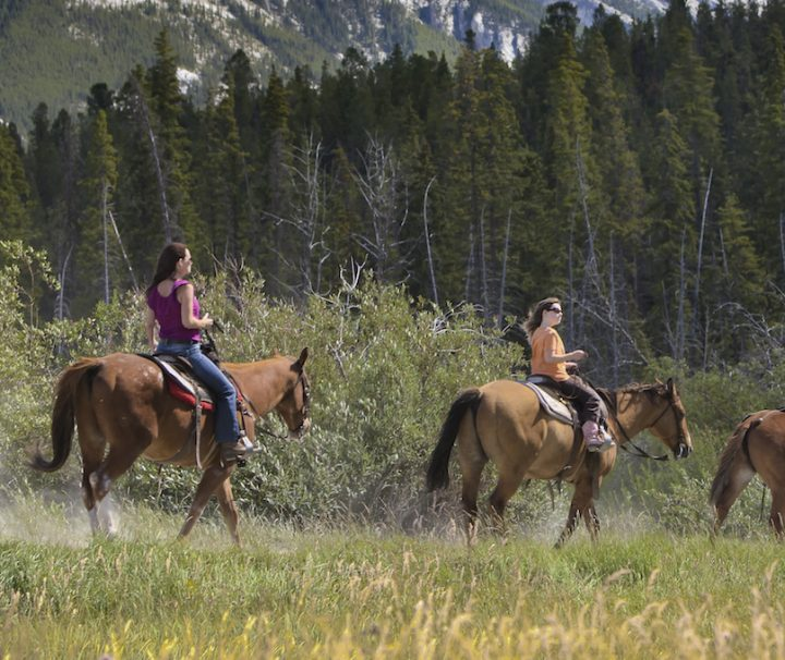 Horseback Rides in Banff, Banff Trail Riders
