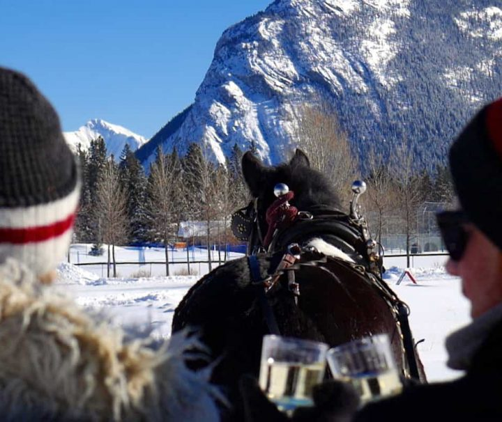 Private Banff sleigh ride with sparkling wine with Banff Trail Riders