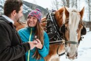 Private sleigh ride celebration with Banff Trail Riders