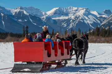 See Banff's winter beauty on a group sleigh ride
