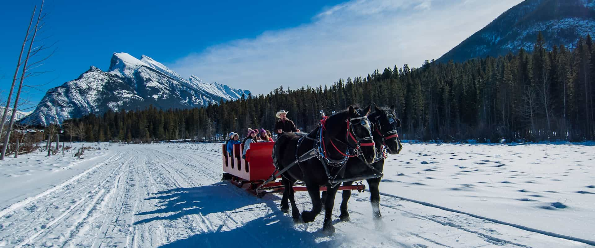 See Mount Rundle and other mountains on a Banff sleigh ride