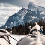 Sleigh ride mountain views with Banff Trail Riders