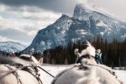 Sleigh ride mountain views with Banff Trail Riders