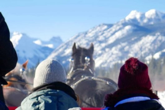 Take a Banff sleigh ride with Banff Trail Riders