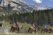Take a guided horseback ride of Banff from Warner Stables with Banff Trail Riders in the Canadian Rockies
