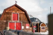 Warner Stables in Winter with Banff Trail Riders