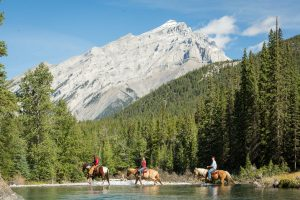 Spray River Horseback Ride Banff Trail Riders