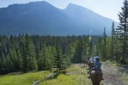 Take a scenic horseback ride through the Spray River from the Banff Springs Corrals