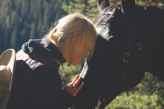 Horseback Riding in Banff, Canadian Rockies with Banff Trail Riders