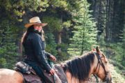 Ride along forested trails on a backcountry vacation with Banff Trail Riders