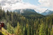 Ride into Banff's backcountry on a horseback vacation with Banff Trail Riders