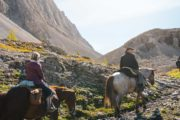 Ride to Allenby Pass from Halfway Lodge with Banff Trail Riders in the Canadian Rockies