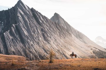 Ride to Allenby Pass summit with Banff Trail Riders in the Canadian Rockies