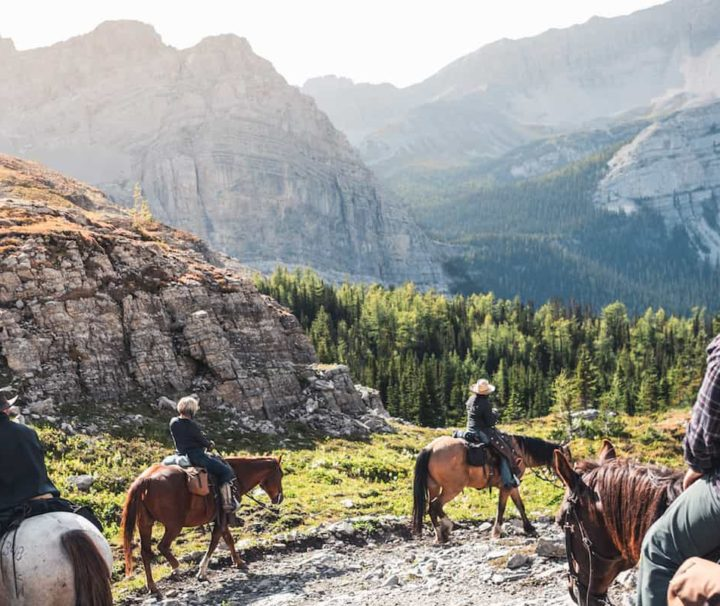Ride to Halfway Lodge from Allenby Pass with Banff Trail Riders in the Canadian Rockies
