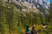 See mountain scenery on a backcountry vacation with Banff Trail Riders