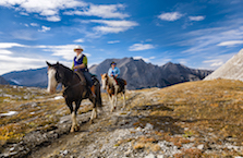 Banff horseback trails