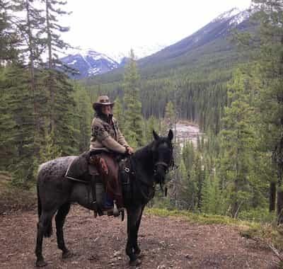 Bluto Guide Horse