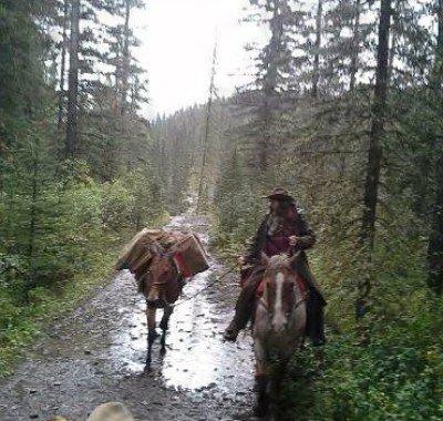 Banff Horseback Rides with Caribou