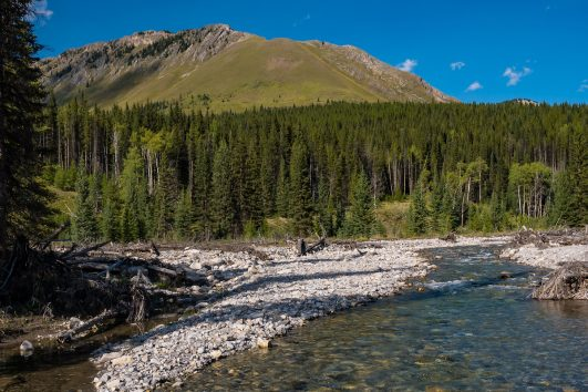 Cascade River by the Stoney Creek Campsite in Banff, Canadian Rockies