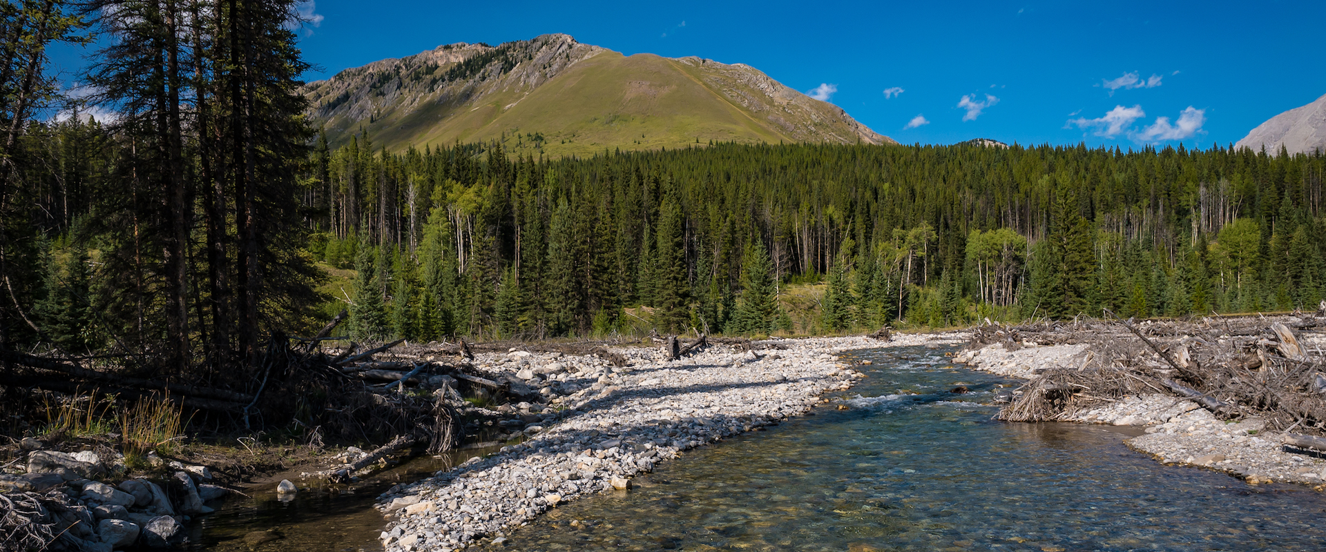 Canadian Rockies Horseback Riding Trails