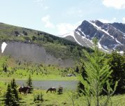 Banff Horseback Riding with Banff Trail Riders