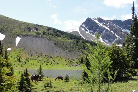 Banff Horseback Riding with Banff Trail Riders