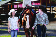 Children Pony Rides in Banff, Canadian Rockies with Banff Trail Riders