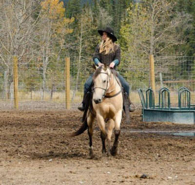 Banff Horseback - Cisco