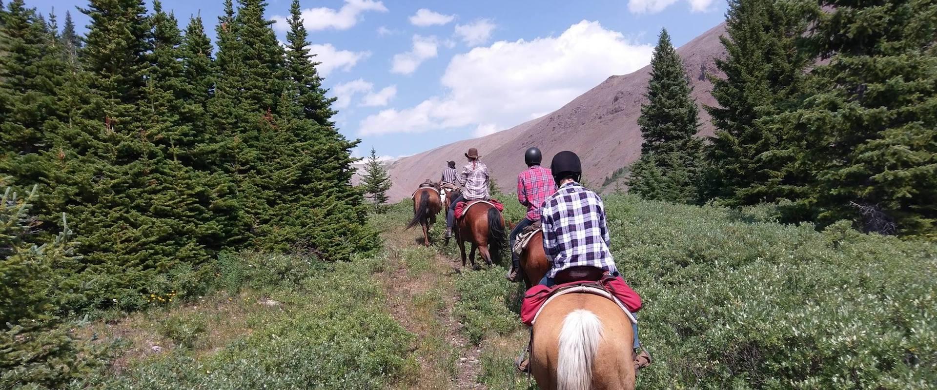 Canadian Rockies Horseback Trail Rides