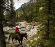Day Ride on the Stoney Creek Backcountry Tent Trip in Banff, Canadian Rockies