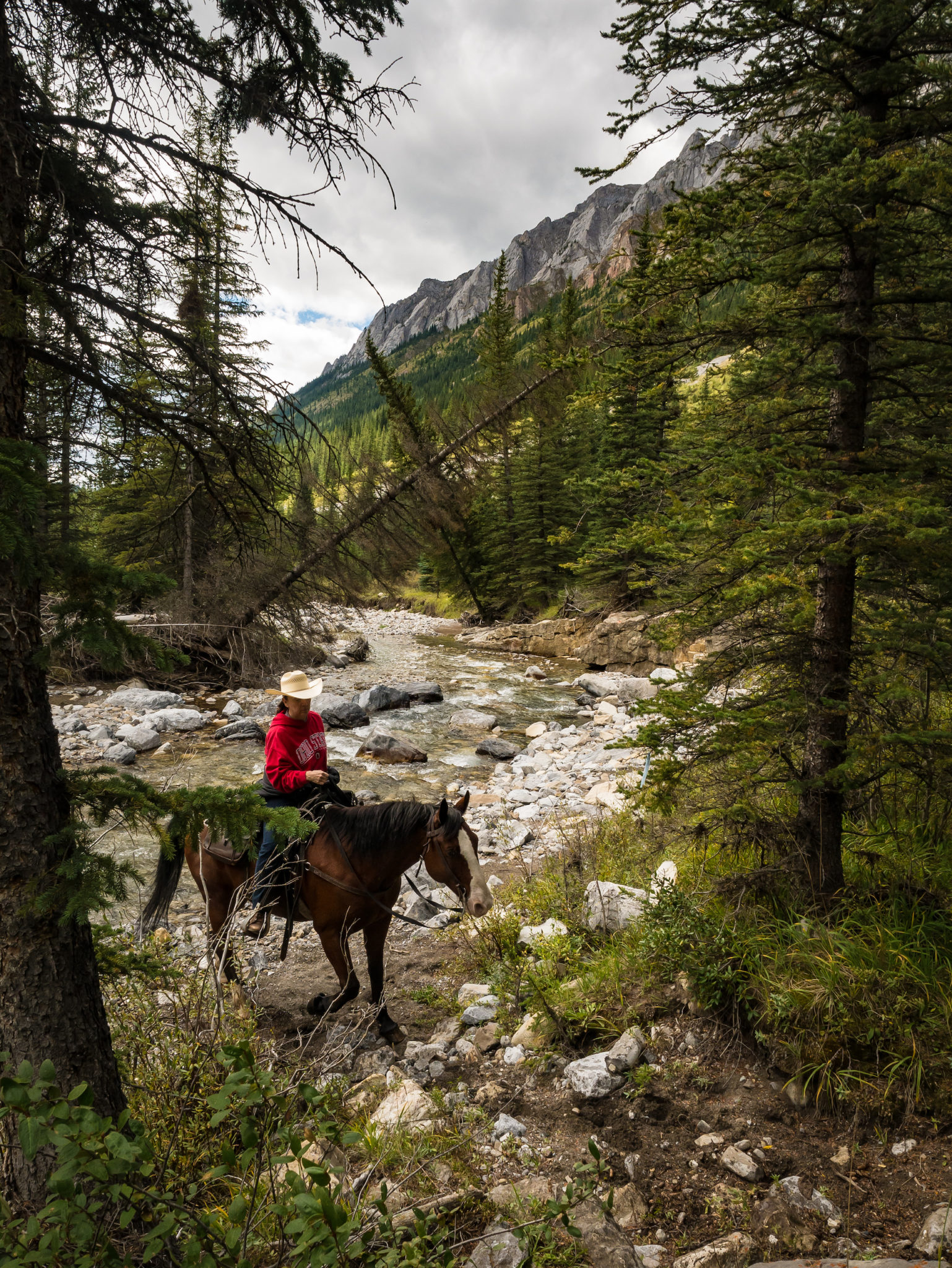 Banff Horseback Riding in Canadian Rockies