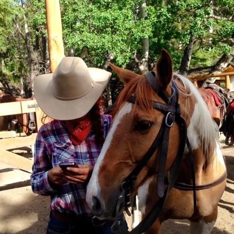 Banff Trail Riders Dexter Guest Horse