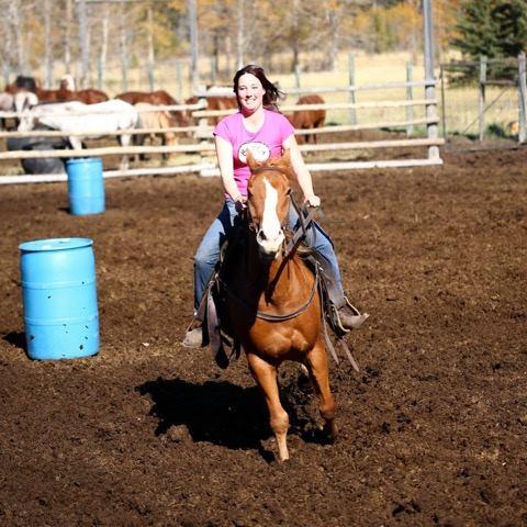 Banff Horseback Riding with Duke Guide Horse