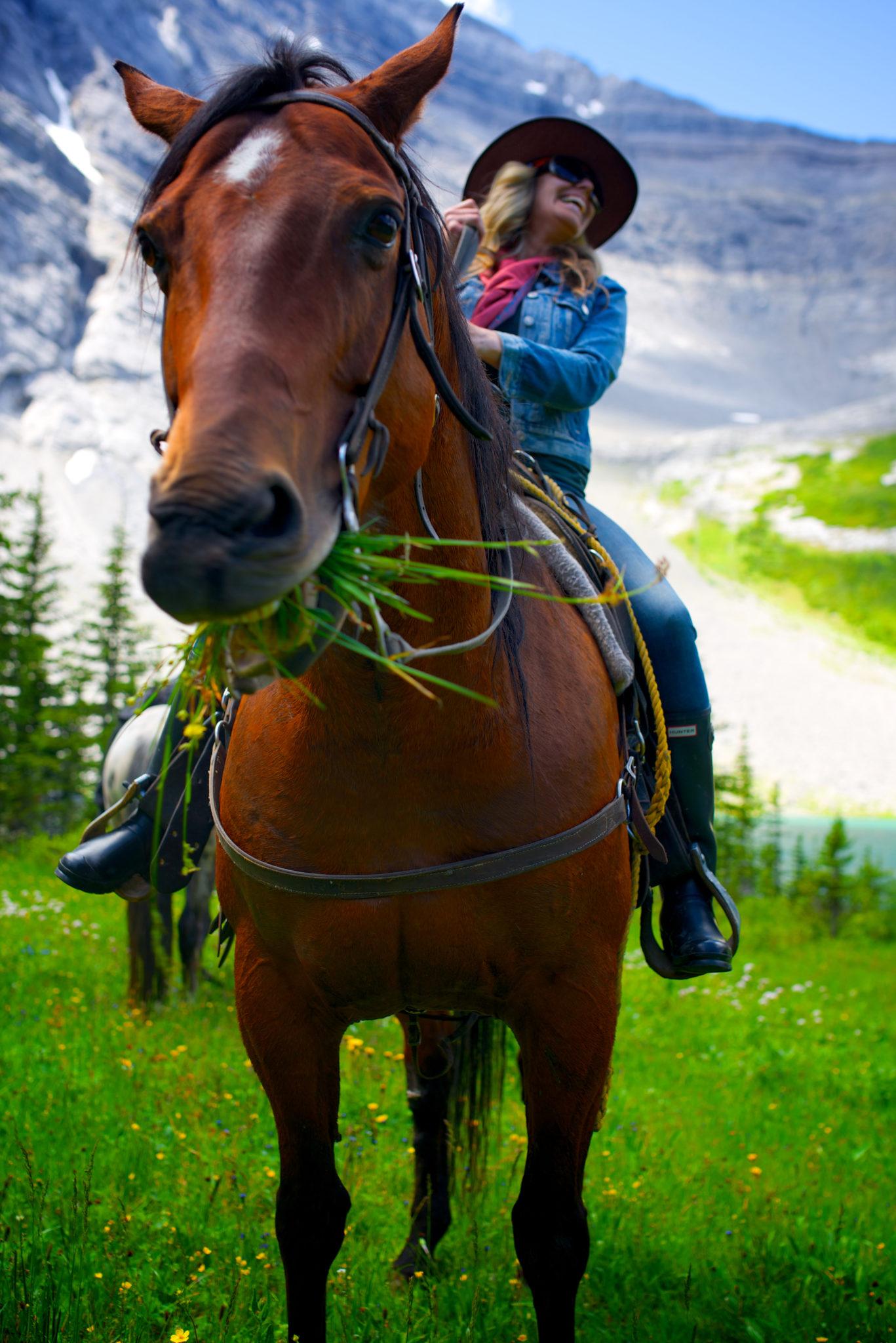 Banff Horseback Trail Rides