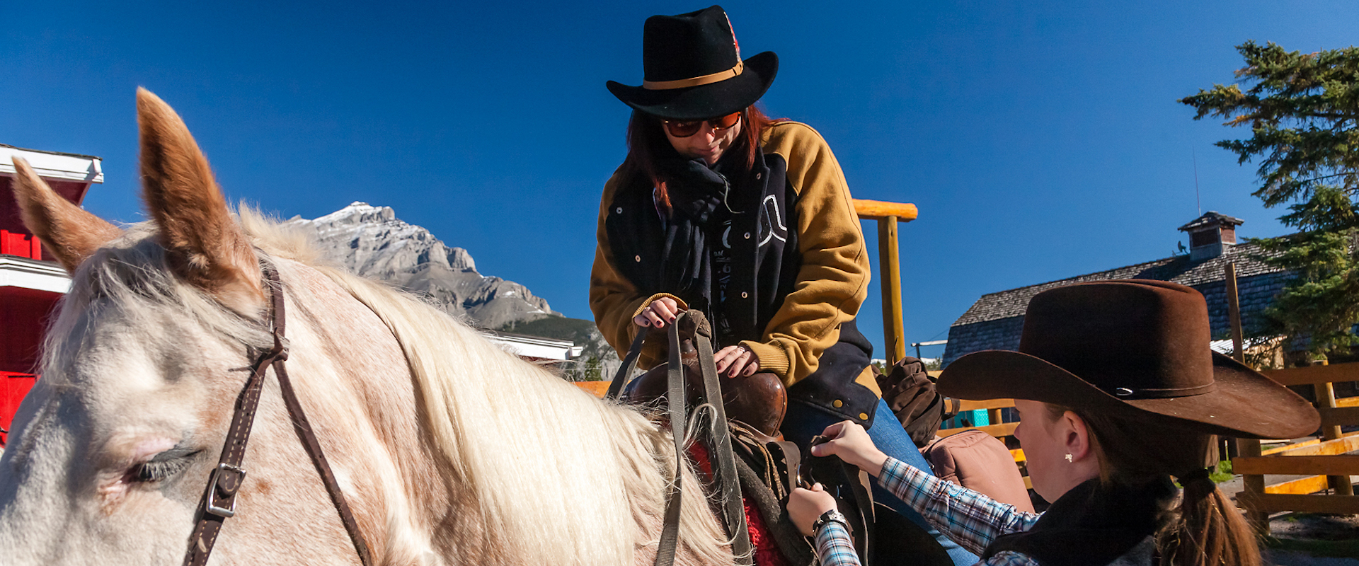 Learn How To Ride A Horse Banff Trail Riders